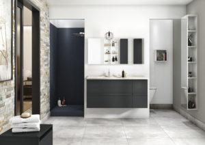 Akido Ambiance Bain douche origine, wc dans la salle de bains